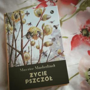 Życie pszczół Maurice'a Maeterlincka – recenzja